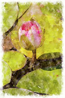 Digital Art - Water Hyacinth Bud Wc by Peter J Sucy