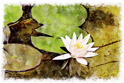 Digital Art - Water Hyacinth Two Wc by Peter J Sucy