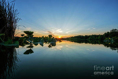Photograph - Water Level Sunset by David Arment