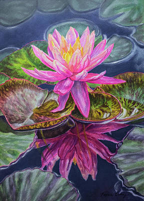 Pool Mixed Media - Water Lilies 17 Sunfire by Fiona Craig