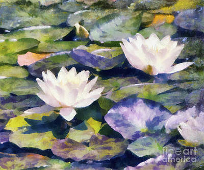 Photograph - Water Lilies by Betsy Foster Breen
