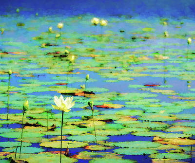 Photograph - Water Lilies Impression 5x6 by James Barber