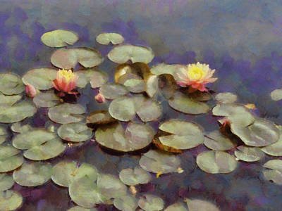 Photograph - Water Lilies Impressionistic by Ann Powell