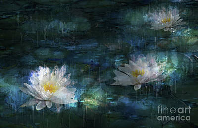 Mixed Media - Water Lilies In The Rain by Shanina Conway