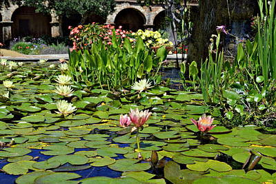 Photograph - Water Lilies - Mission San Juan Capistrano by Glenn McCarthy Art and Photography