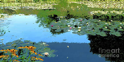Water Lilies Revisited - My Monet Original