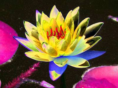 Lego Art - Water Lilies - The Warmth Of The Sun - PhotoPower 2652 by Pamela Critchlow