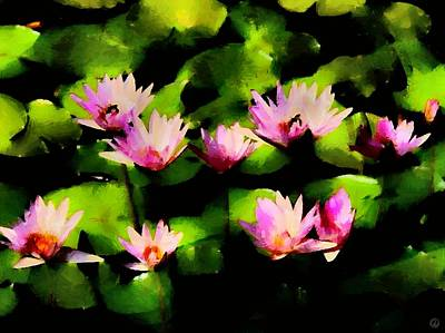 Lilly Pond Digital Art - Water Lillies by Gun Legler