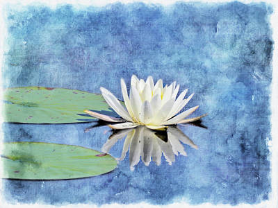 Digital Art - Water Lilly Artised by Rusty R Smith