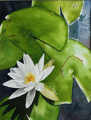 Painting - Water Lilly by Gigi Dequanne