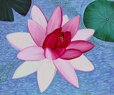 Water Lilly Art Print by Loraine LeBlanc