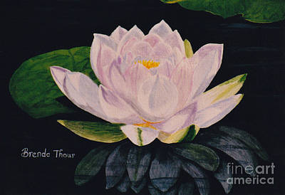 Painting - Water Lily by Brenda Thour