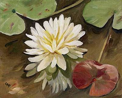 Painting - Water Lily by Cheryl Pass