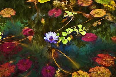 Digital Art - Water Lily Dreams by Terry Cork