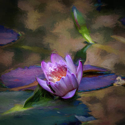 Photograph - Water Lily by Erwin Spinner