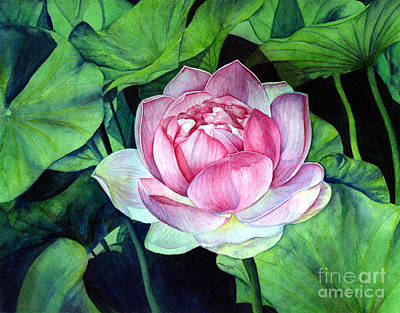 Japanese -sumi-e Painting - Water Lily by Hailey E Herrera
