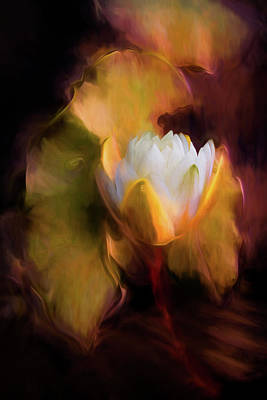 Photograph - Water Lily In Warm Watercolors by Debra and Dave Vanderlaan