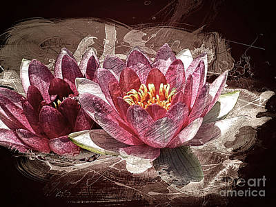 Painting - Water Lily by Methune Hively