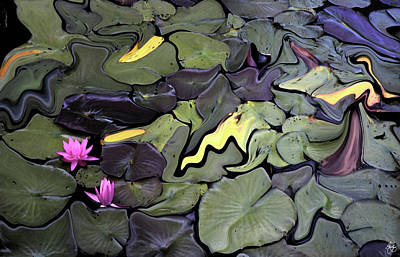 Photograph - Water Lily Mosaic by Wayne King