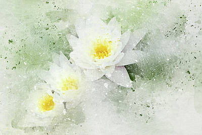 Digital Art - Water Lily by Peggy Cooper