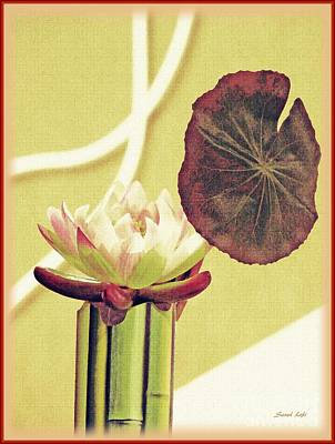 Photograph - Water Lily Still Life by Sarah Loft