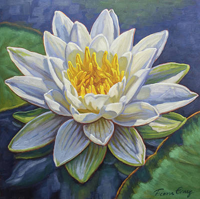 White Waterlily Painting - Water Lily Study 4 by Fiona Craig