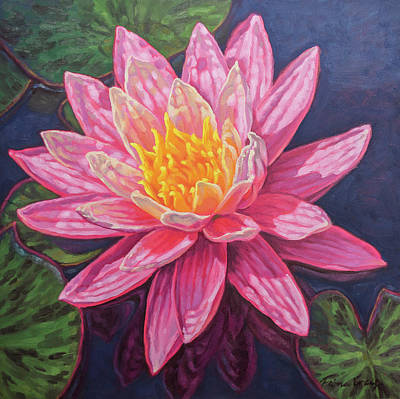 White Waterlily Painting - Water Lily Study 5 by Fiona Craig