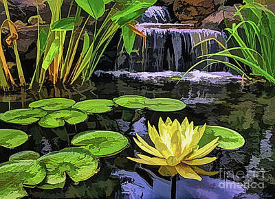 Digital Art - Water Lily by Walter Colvin