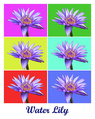 Photograph - Water Lily X6 Titled by Lou Ford