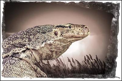 Photograph - Water Monitor Lizard by LeeAnn McLaneGoetz McLaneGoetzStudioLLCcom