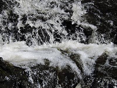 Dainty Daisies - Water on Black Rock by Michaela Perryman