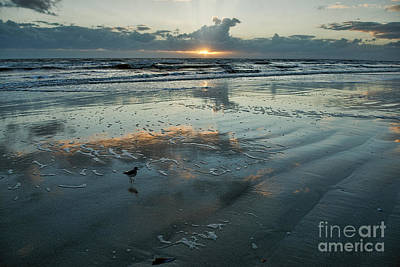 Photograph - Water On The Beach by David Arment