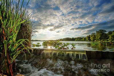 Photograph - Water Reeds And Sky by David Arment