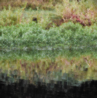 Photograph - Water Reflection by Bonnie Bruno