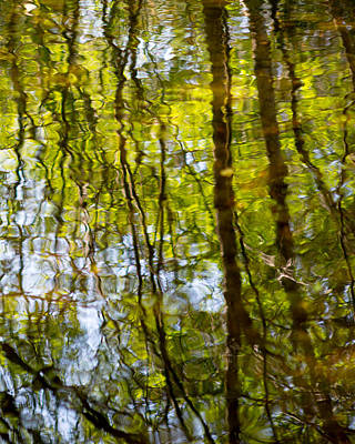 Photograph - Water Ripples 1 by Rebecca Cozart