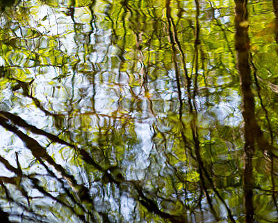 Photograph - Water Ripples 2 by Rebecca Cozart
