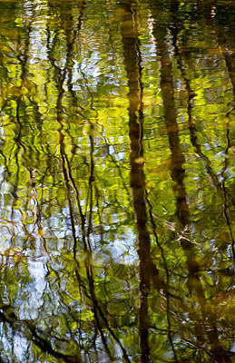 Photograph - Water Ripples 3 by Rebecca Cozart