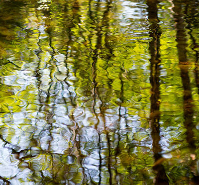 Photograph - Water Ripples 4 by Rebecca Cozart