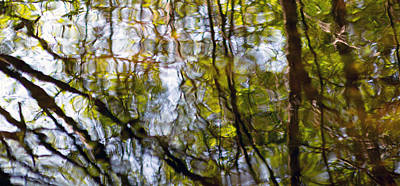 Photograph - Water Ripples 5 by Rebecca Cozart