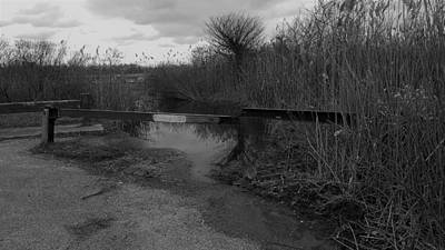 Photograph - Water Road B W by Rob Hans