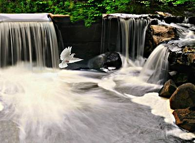 Photograph - Water Runs Dry by Diana Angstadt