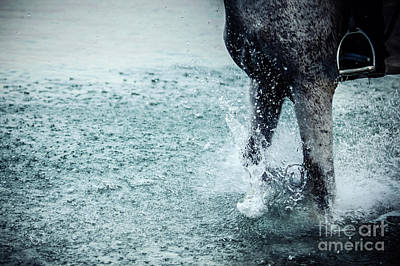 Photograph - Water Splash Horse Legs Running On The Water by Dimitar Hristov