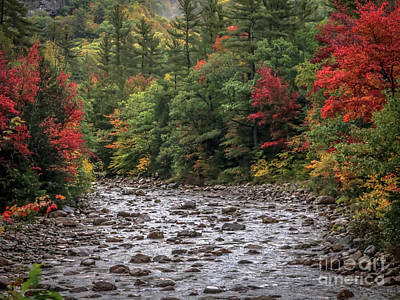 Photograph - Water Stream In The White Mountains by Claudia M Photography