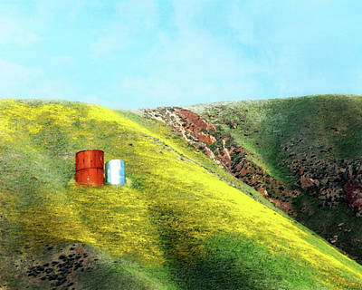 Photograph - Water Tanks And Wildflowers by Timothy Bulone