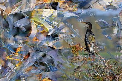 Photograph - Water Turkey In Abstract by rd Erickson