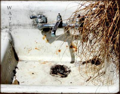 Primitive Photograph - Water Vacancy  by Steven Digman