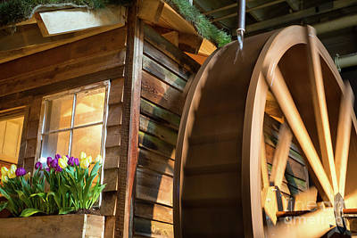 Photograph - Water Wheel 2 by Kevin McCarthy