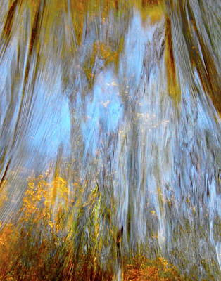 Photograph - Water Wonder 247 by George Ramos