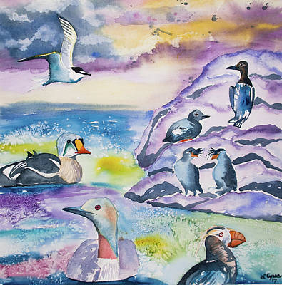 Auklets Painting - Watercolor - Alaska Seabird Gathering by Cascade Colors