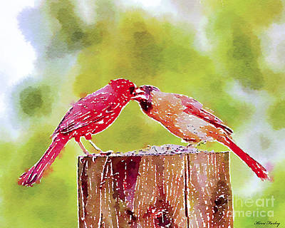 Photograph - Watercolor Art - Male And Female Cardinals by Kerri Farley